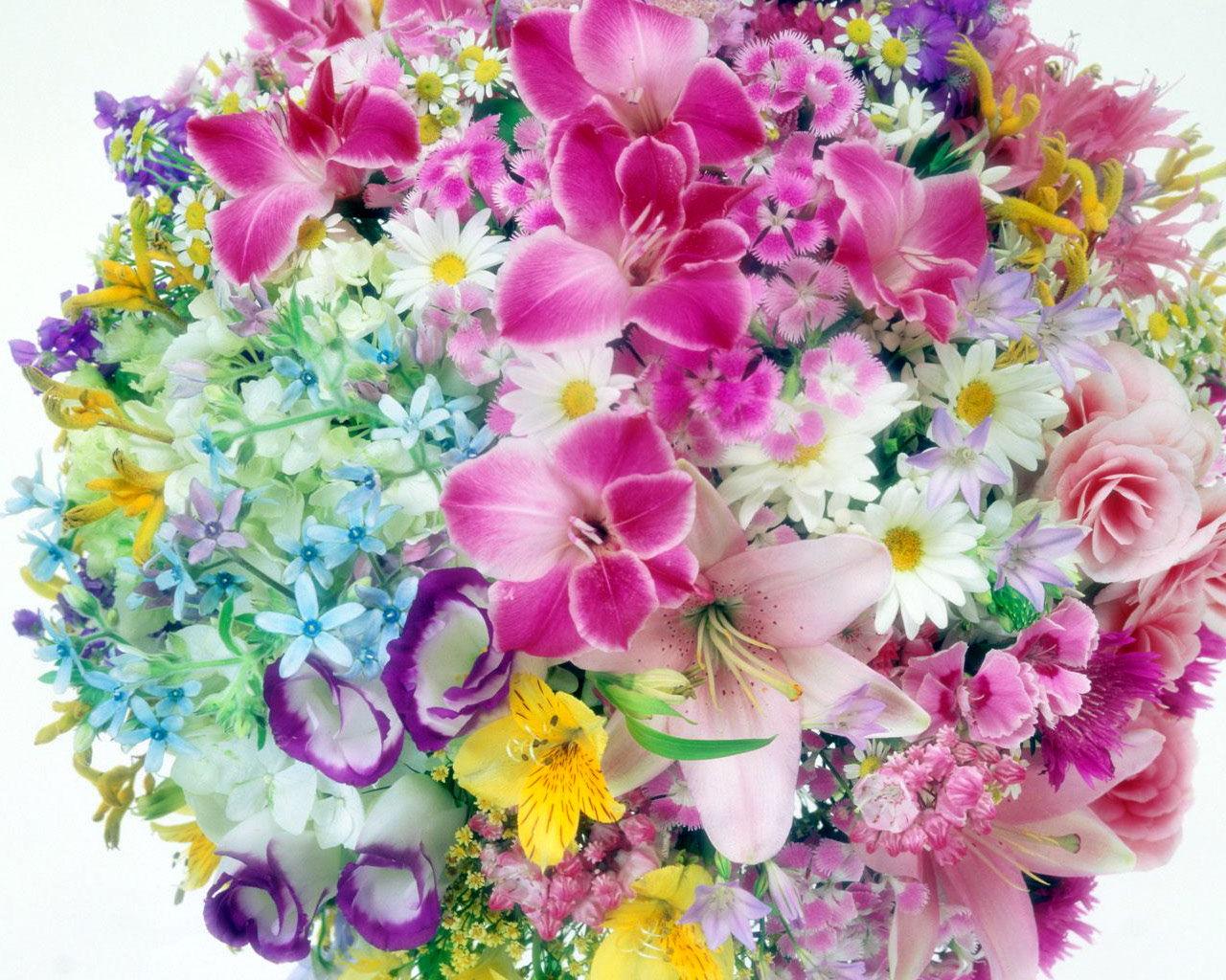 http://dreempics.com/img/picture/Apr/18/d50148f0b84f2287acff54a517bd1b56/4.jpg