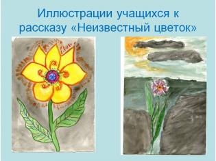 платонов цветок на земле слушать сказку