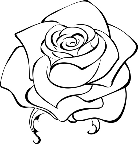 цветы картинки черно-белые