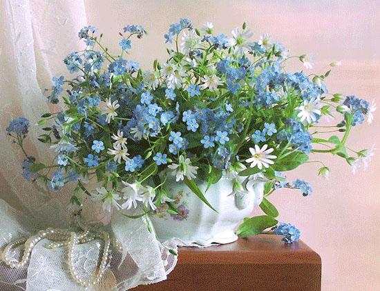 Фото цветов на лиру