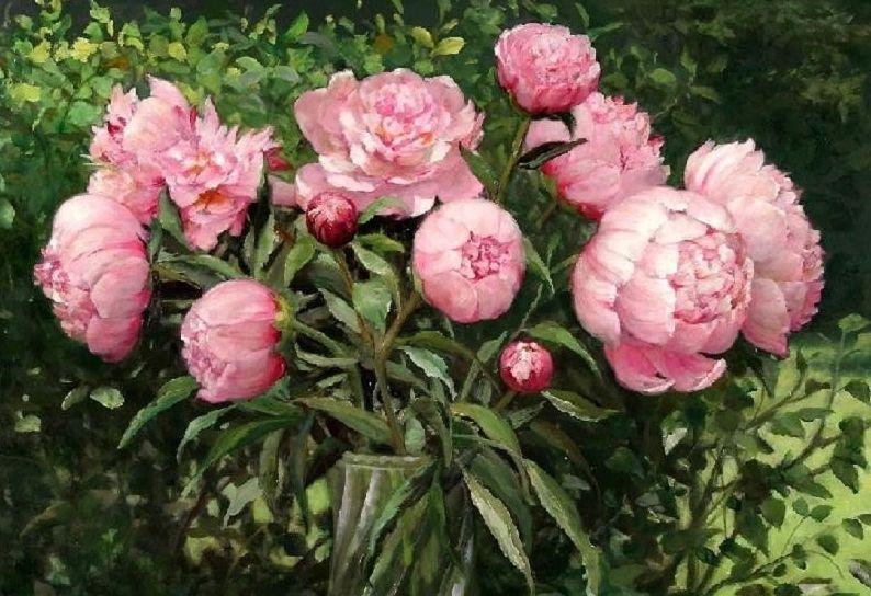 Цветы пионы самые красивые картинки - 1dc0b