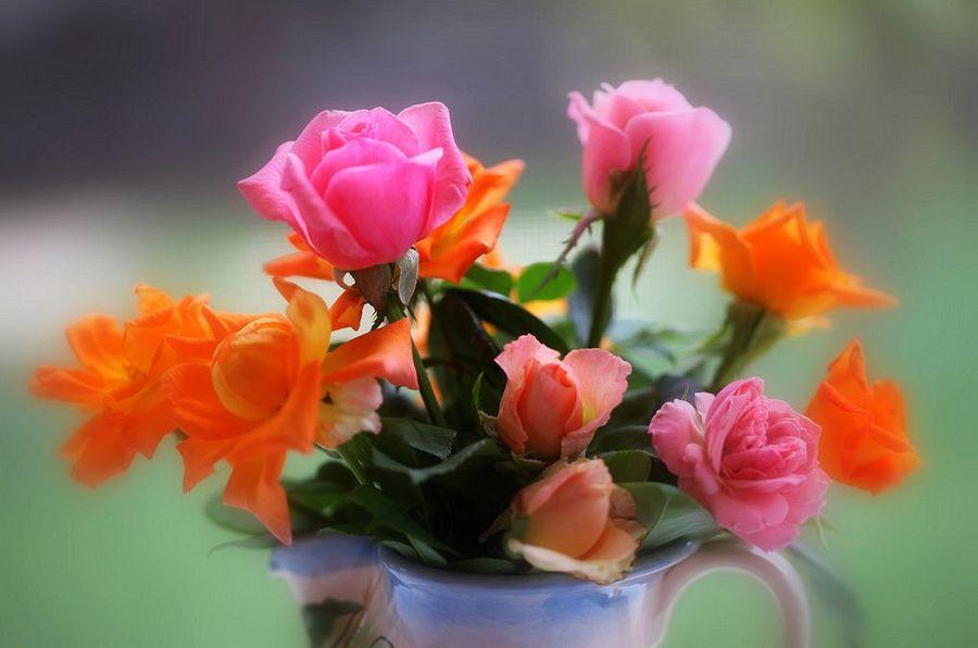 Картинки для рабочего стола букеты с цветами