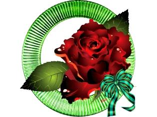 Анимированные картинки распускающихся цветов