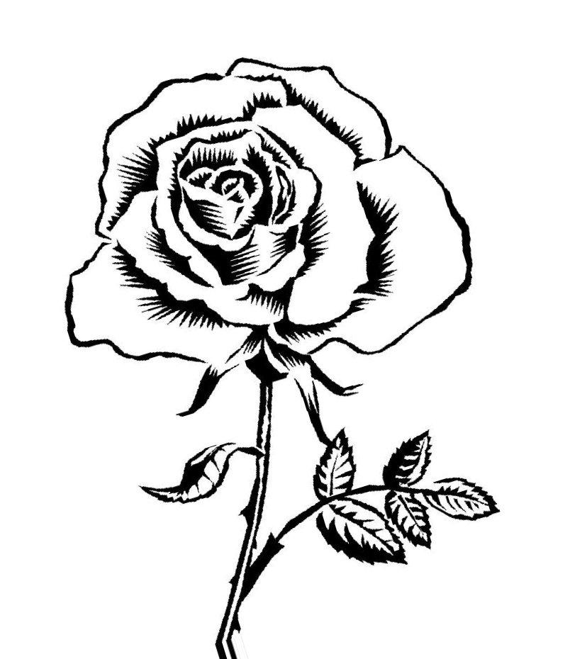 Чёрно белая картинка раскраска