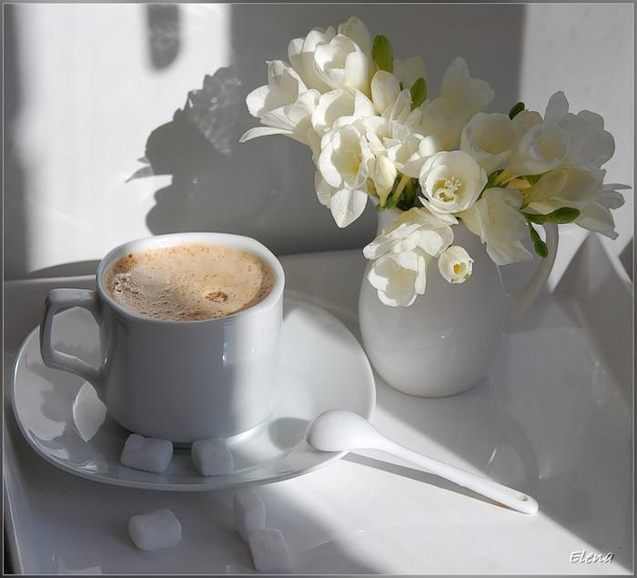 Кофе фото цветок