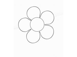 Картинка строение цветка для детей  DreemPicscom