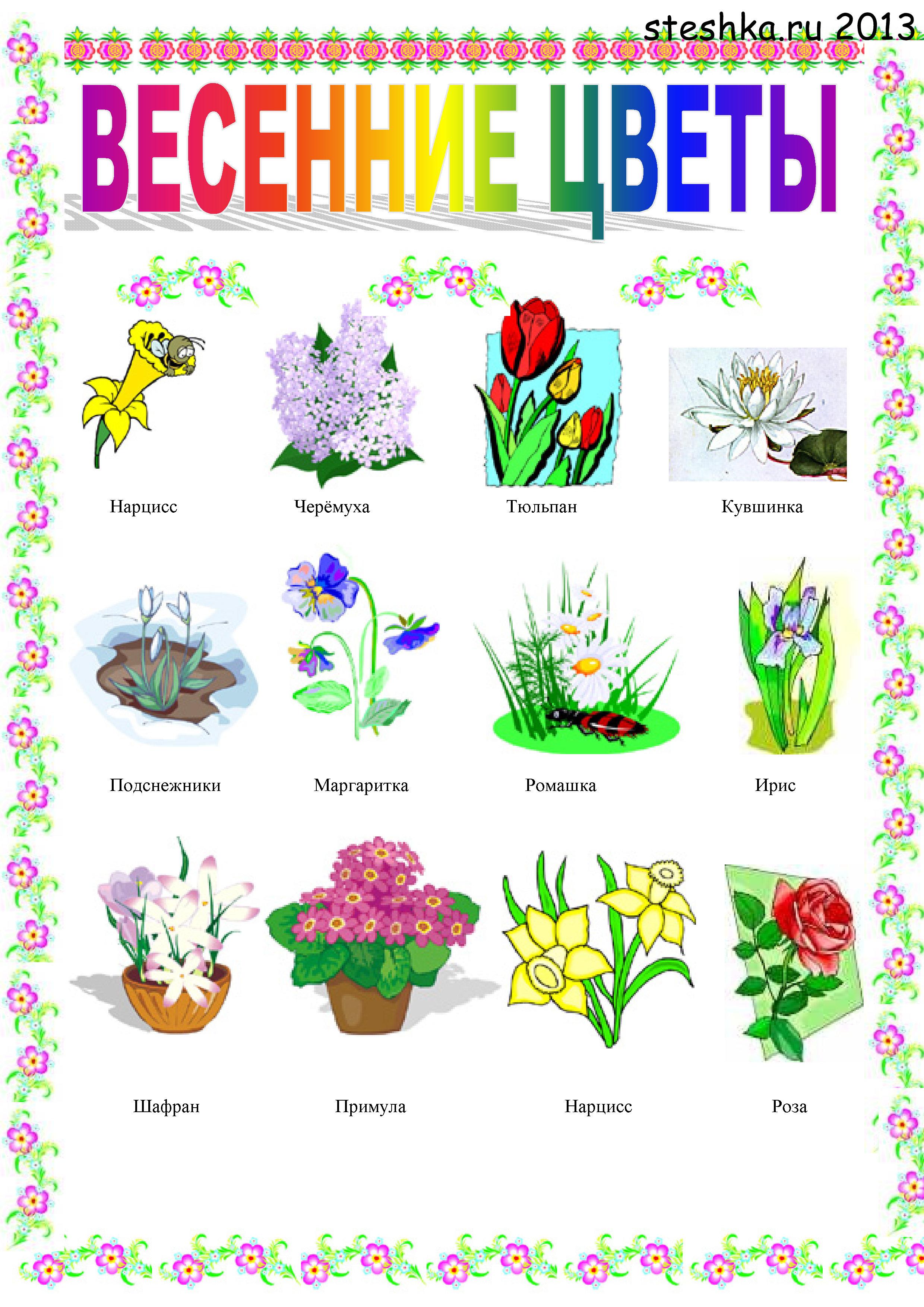 фото флажка для детей