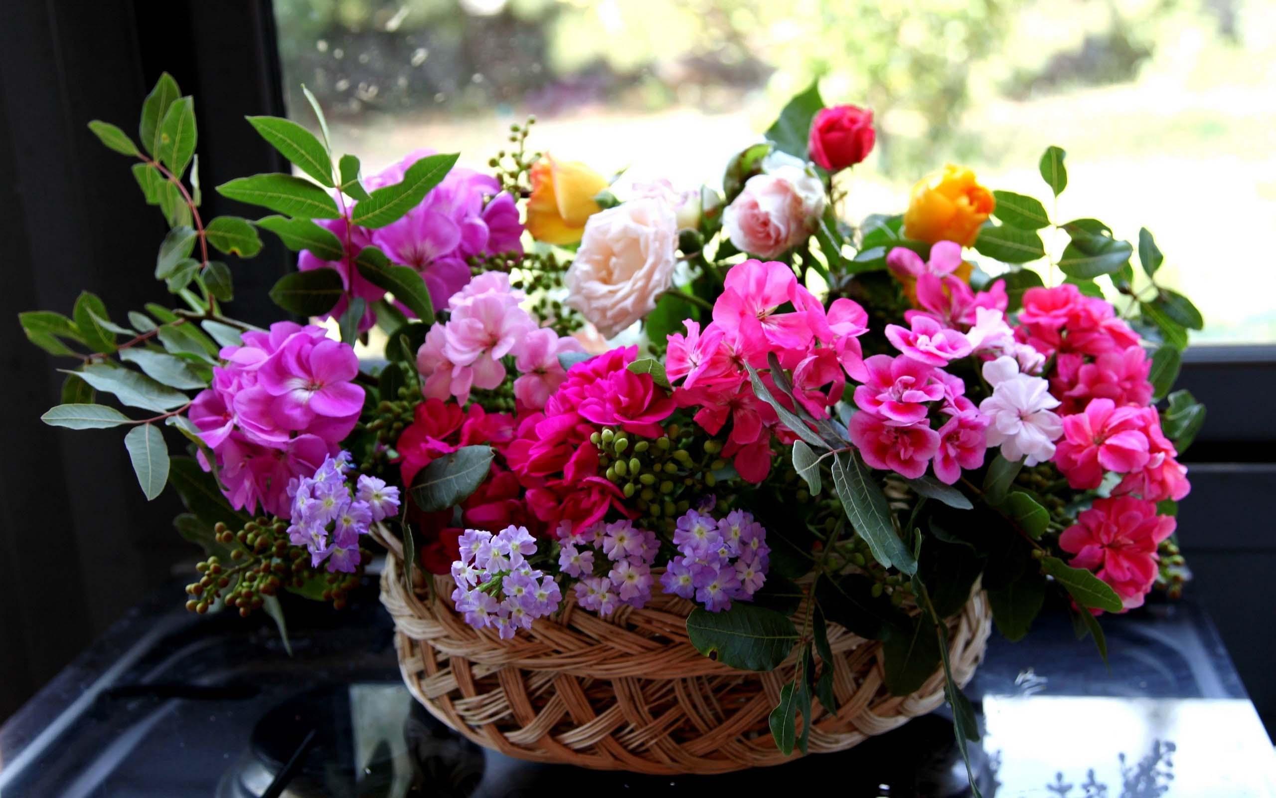 http://dreempics.com/img/picture/Apr/13/837bc650a6f72c7564d6be87b9394443/2.jpg