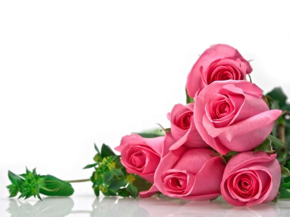 Стих к поздравлению цветы 541