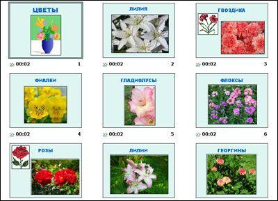 Цветы фото название