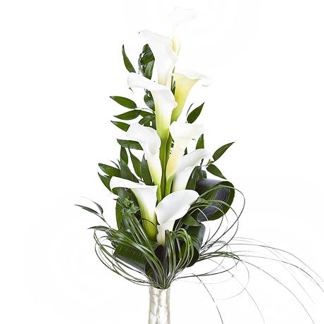 Фото мак цветка