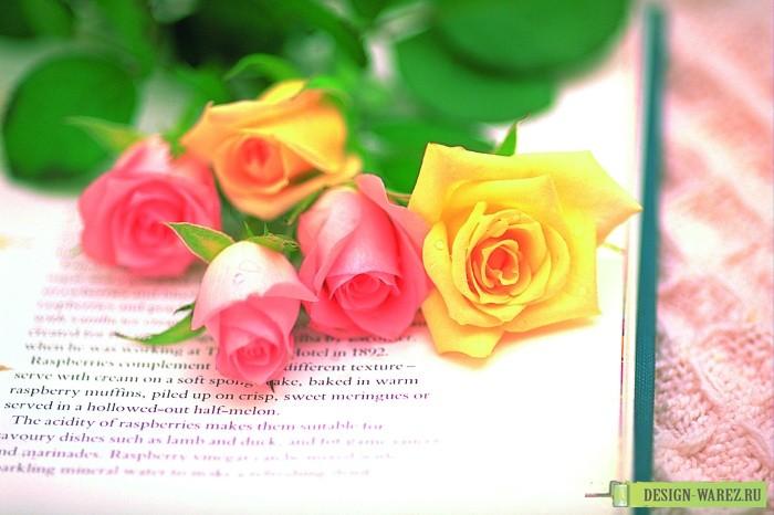 Поздравления картинки красивые цветы