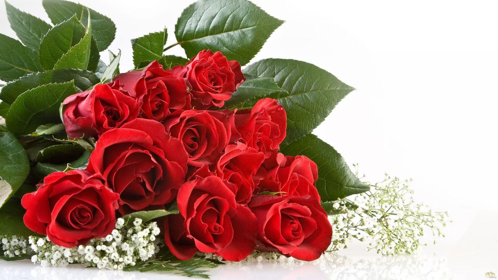 Для любимой девушке цветы