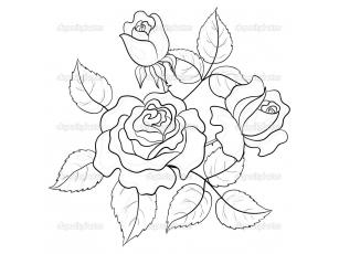 Картинки цветов черных