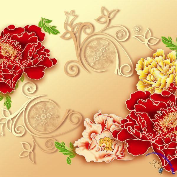 Фото комнатные цветы на подоконнике
