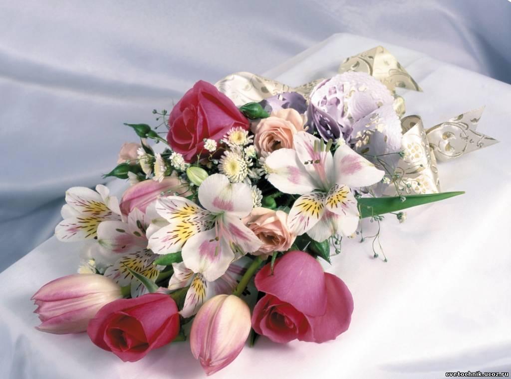 Лилии белые цветы фото