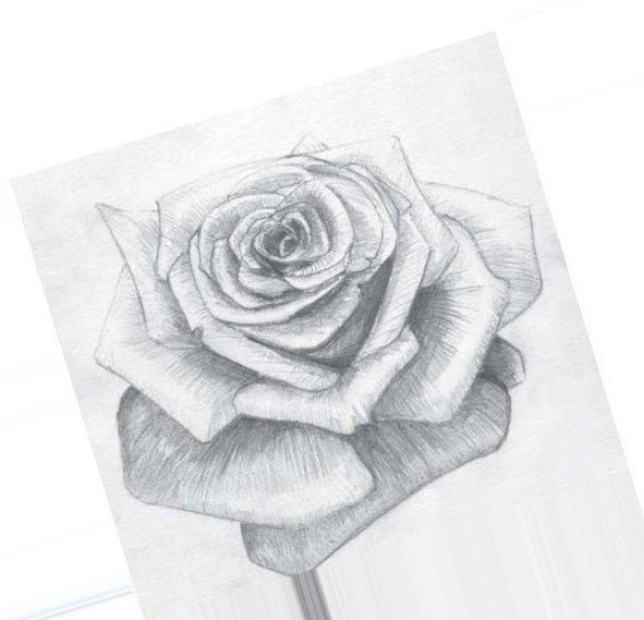 Рисованные картинки букеты цветов 5