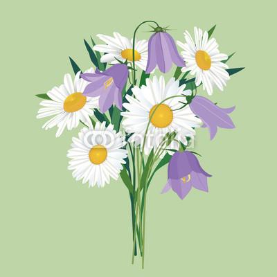 Рисунки полевые цветы