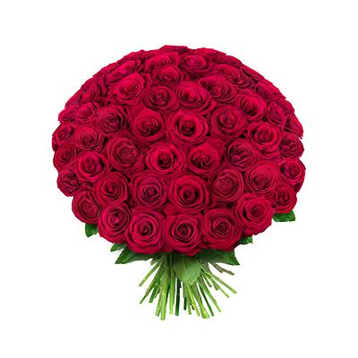 самые шикарные цветы