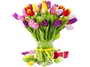 Красивые цветы тюльпаны картинки
