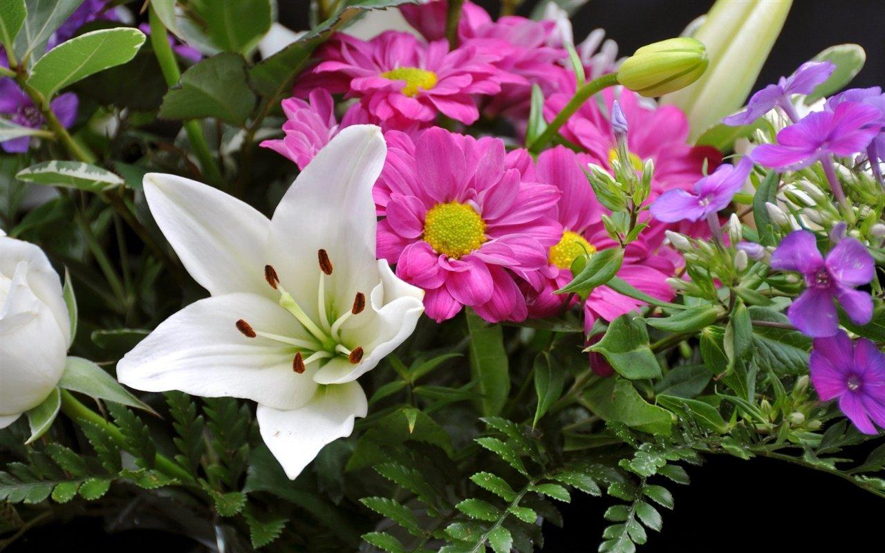 Мир красивых цветов фото