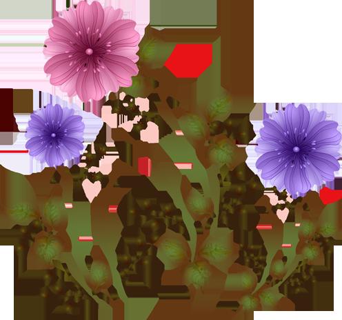 Анимация на прозрачном фоне цветы