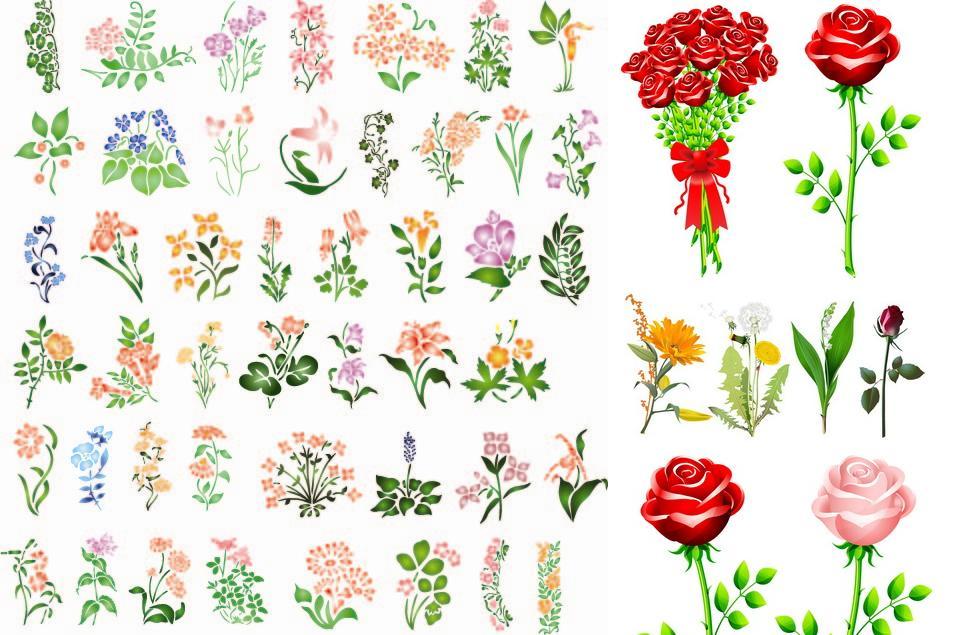 Много красивых цветов фото
