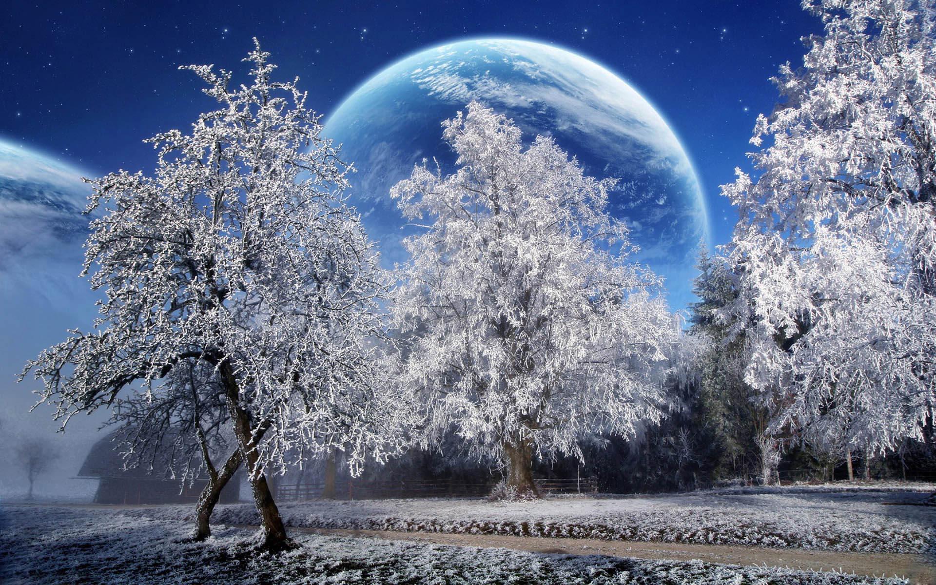 Зимняя фотоподборка