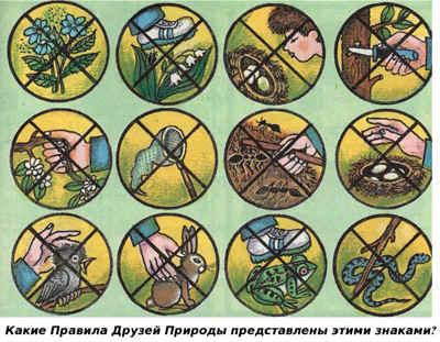 Берегите растения  красу Земли!  Открытый класс