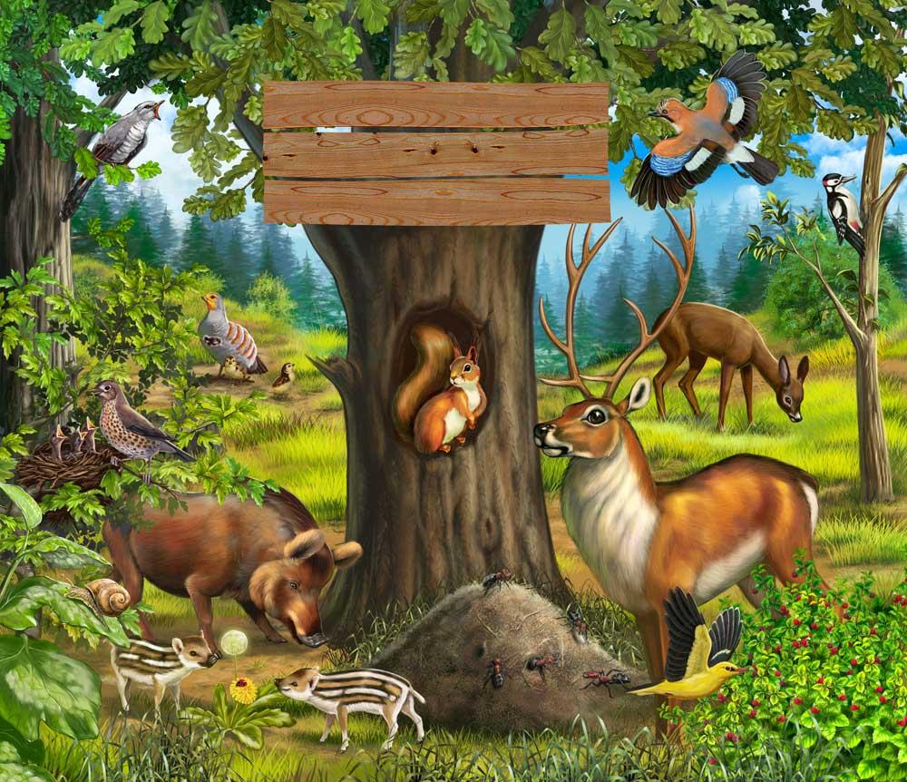 дидактические игры на тему животные севера