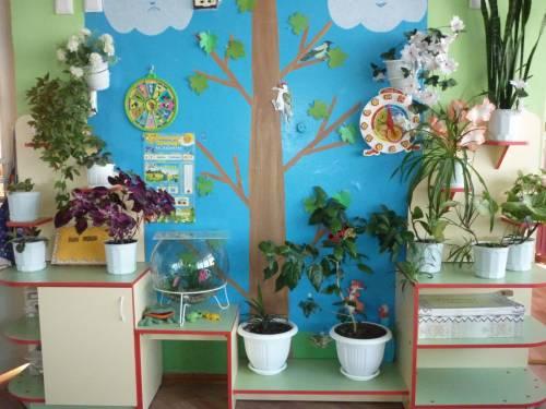 фото уголок природы в детском саду