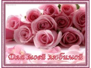Цветы любимой картинки