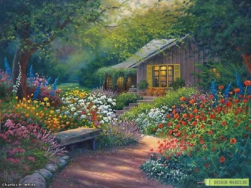 пейзаж красивый природы фото