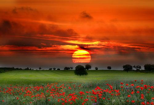 Прекрасные картинки о природе
