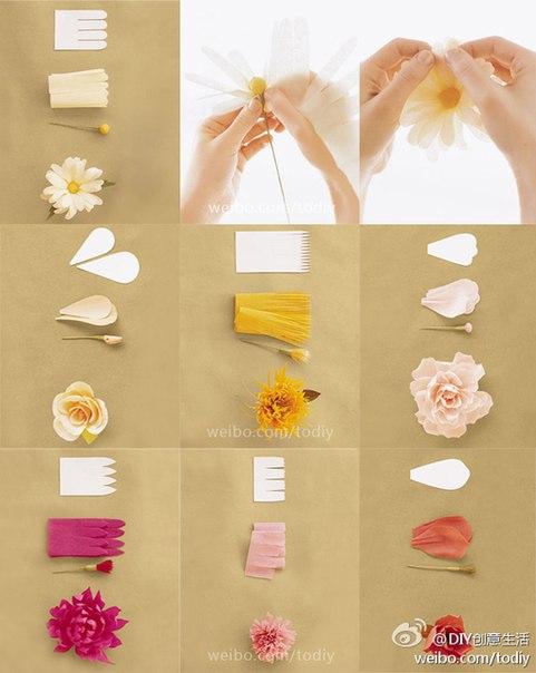Как сделать цветы из бумаги мастер класс