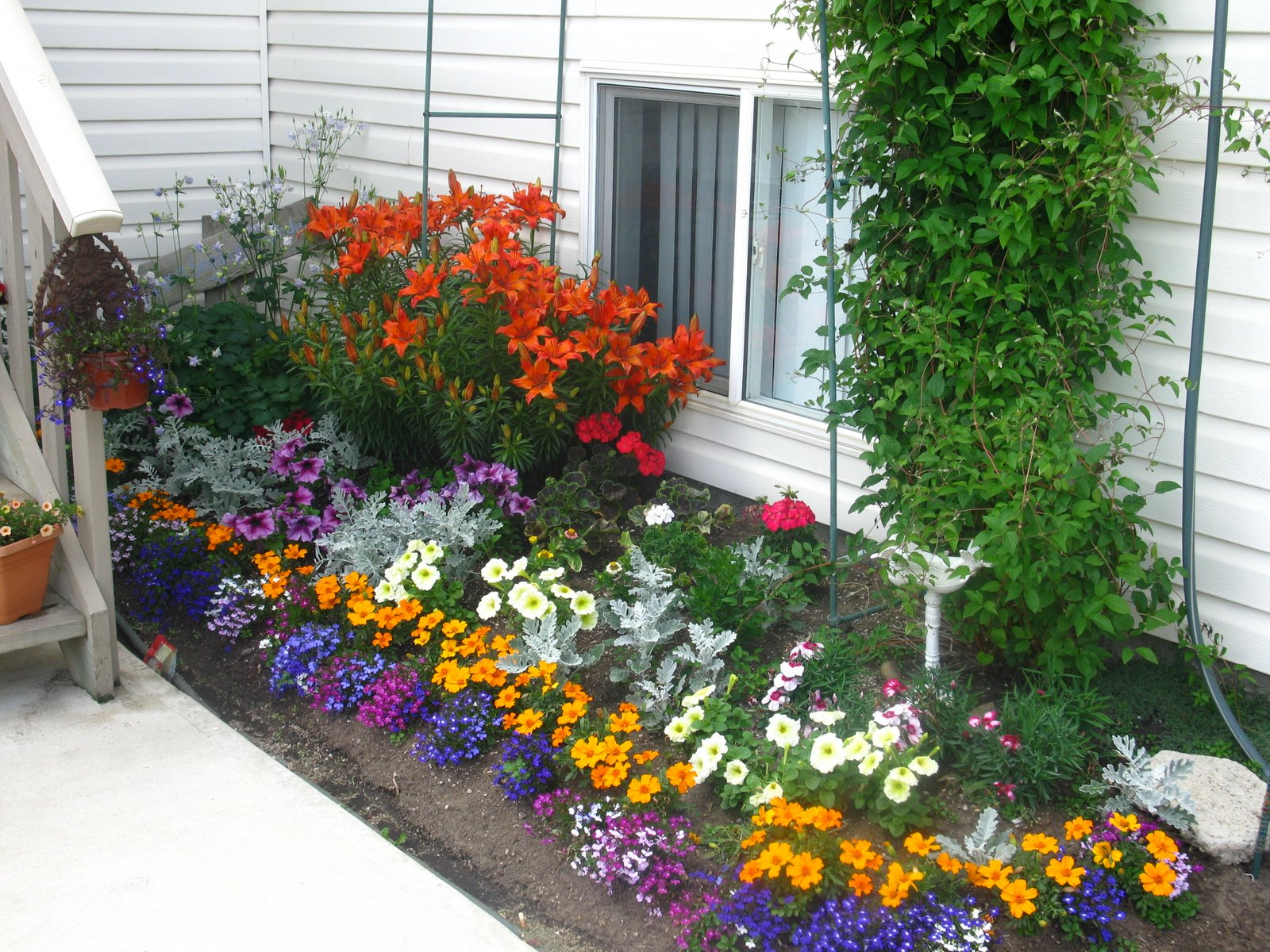 Цветы для сада своими руками фото