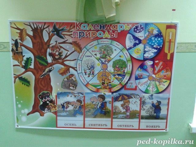 Уголки природы в детском саду своими руками фото