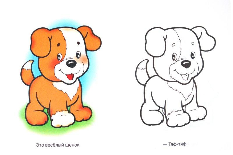 Собаки раскраски цветные