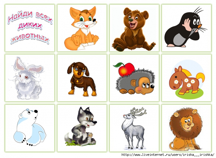 Животные домашние картинки скачать бесплатно на 7