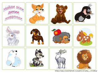 Домашние животные их детеныши картинки для детей
