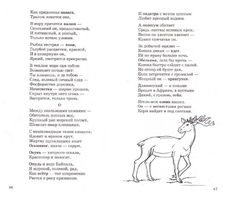 Детские стихи - Раннее развитие детей. Детские загадки о диких животных с