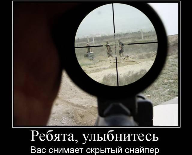 волков на аватарку вконтакте