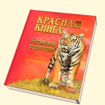 Какие цветы в красной книге россии