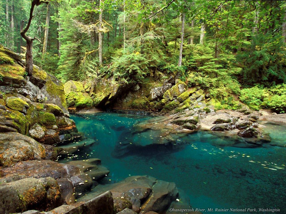 Картинки про природу самые красивые - be83