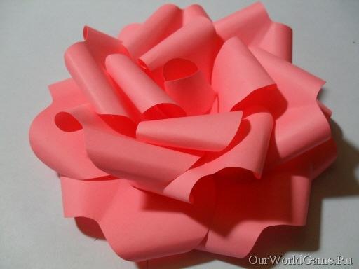 Цветы из бумаги - новости