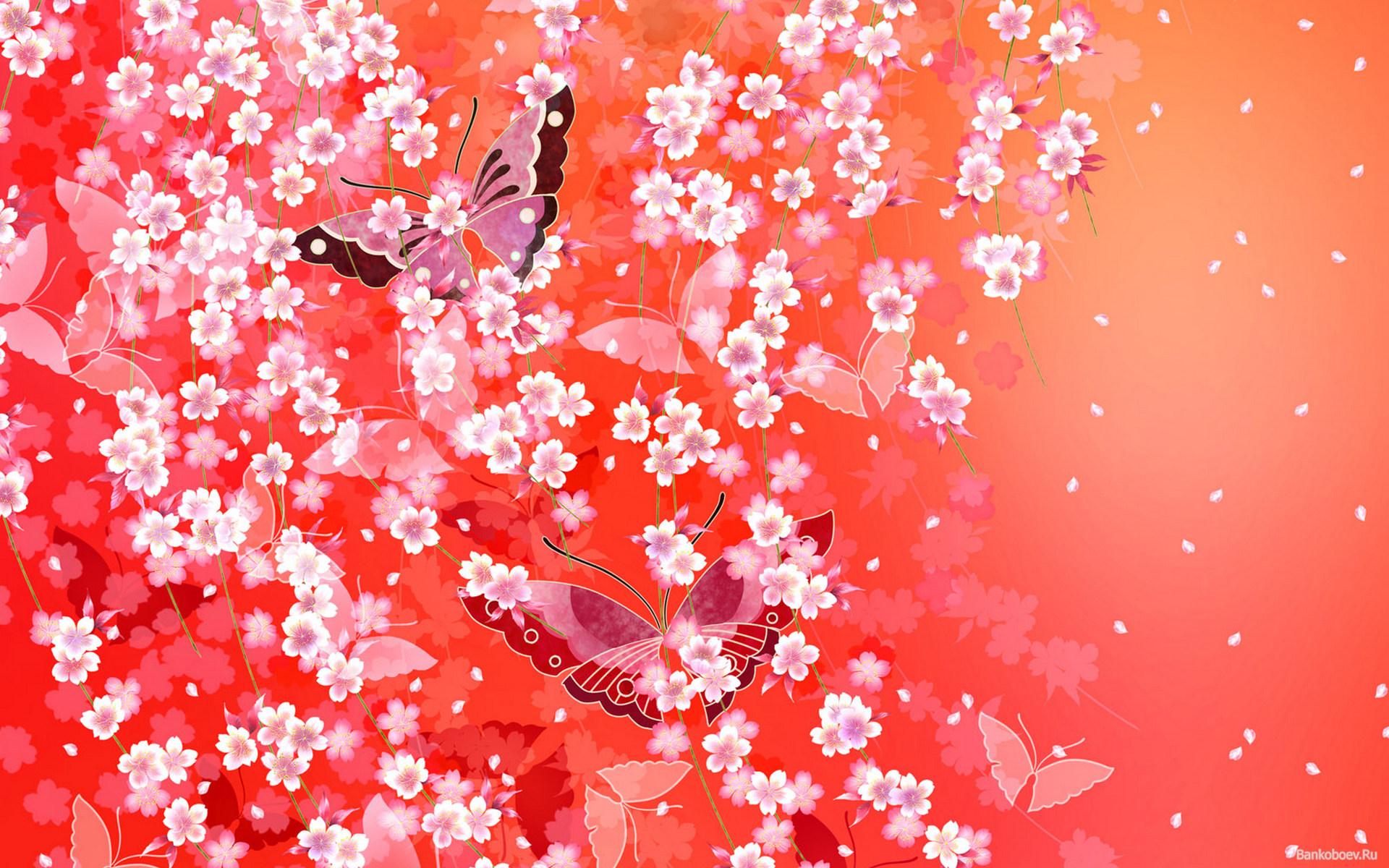 Гацания: выращивание из семян - Садовые цветы