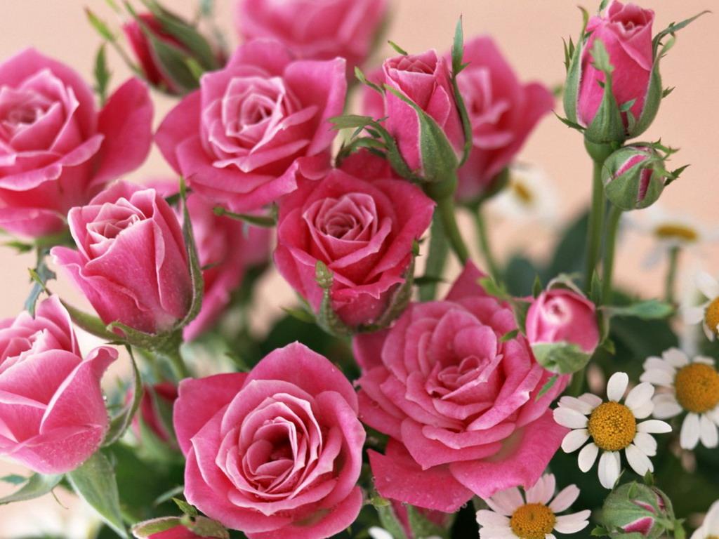 Скачать красивый букет цветов ...: dreempics.com/flowers/552-Skachat_krasivey_buket_tsvetov_kartinka.html