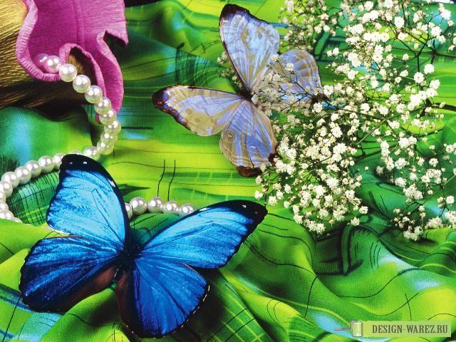 Картинки природы и красивых цветов