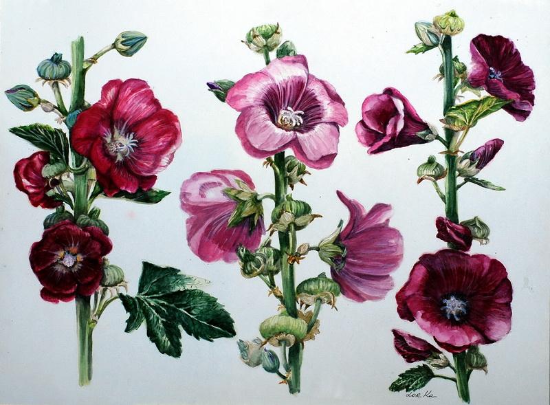 Рисунки цветы красивые
