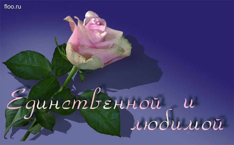 http://dreempics.com/img/picture/Mar/25/5da5bf69b310662cd2605a1124f9e9a4/3.jpg